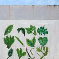 Sao Tomé,murale che raffigura le piante commestibili e medicinali