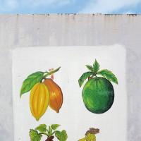 Sao Tomè,murale che raffigura la carambòla,la fruta-pao,la matabala e la banana